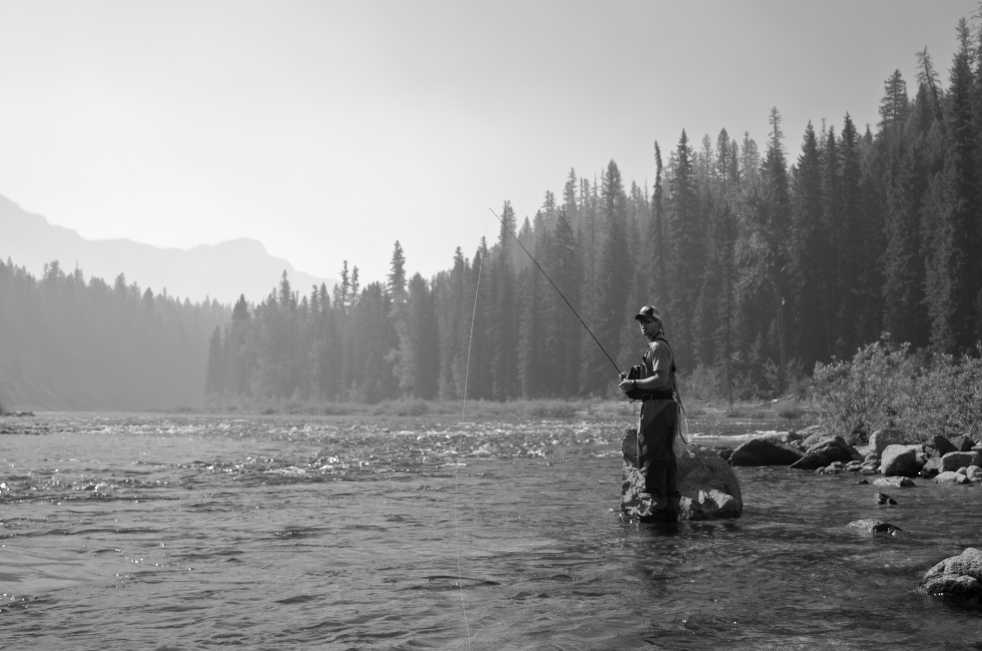 fly fishing montana, montana, fly fishing, fly fishing missoula, missoula, bob marshall wilderness, native cutthroat, trout
