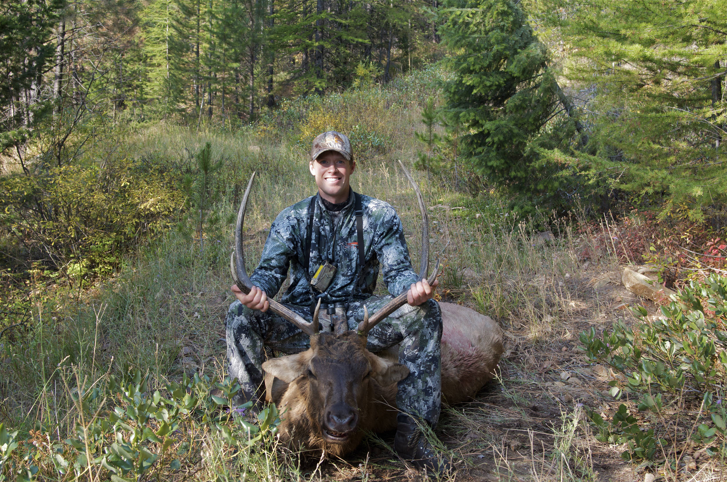 Bowhunting Montana, archery elk hunting, Montana, MT, hunting district 292, Montana Wild, elk, bugling elk, outdoors, missoula, wallows, October