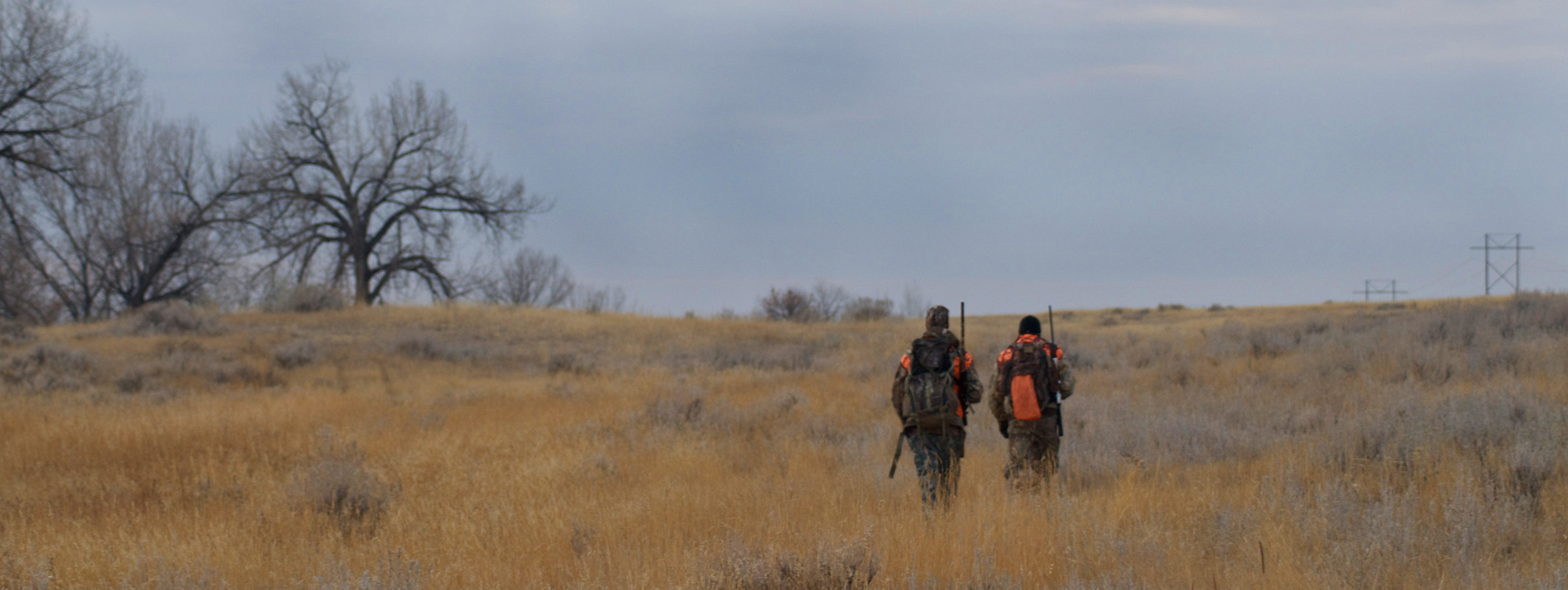 Coyote hunting, deer, Montana, Montana Wild, mule deer, rifle, calling coyotes, Missoula, Havre, MT, Remington