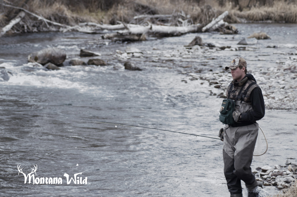 fly fishing, montana wild, mt, winter, rainbow, trout, cutbow, river, missoula, nymphing, nikon, redington, zack boughton, outdoors