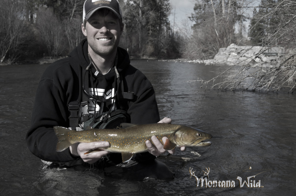 Bull trout, bullies, montana wild, czech nymph, winter, fly fishing, rivers, Missoula, 5wt, deep pools, runs, Orvis, Boughton