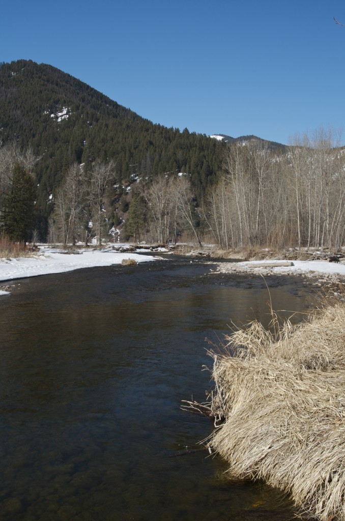 fly fishing rock creek, fishing montana, fly fishing in the winter, Orvis