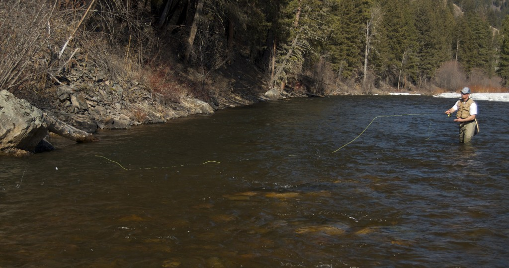 perfect fly cast, how to fly cast, fly fishing rock creek montana