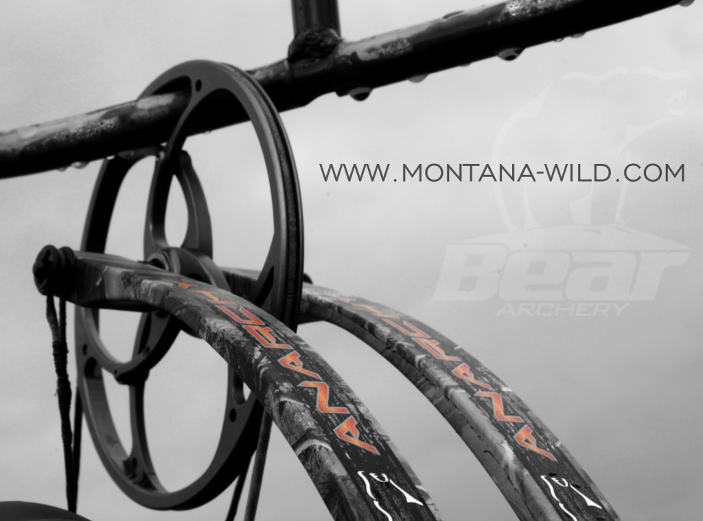 Bear Anarchy, Bear 2012 bow, Bear Archery, Montana Wild