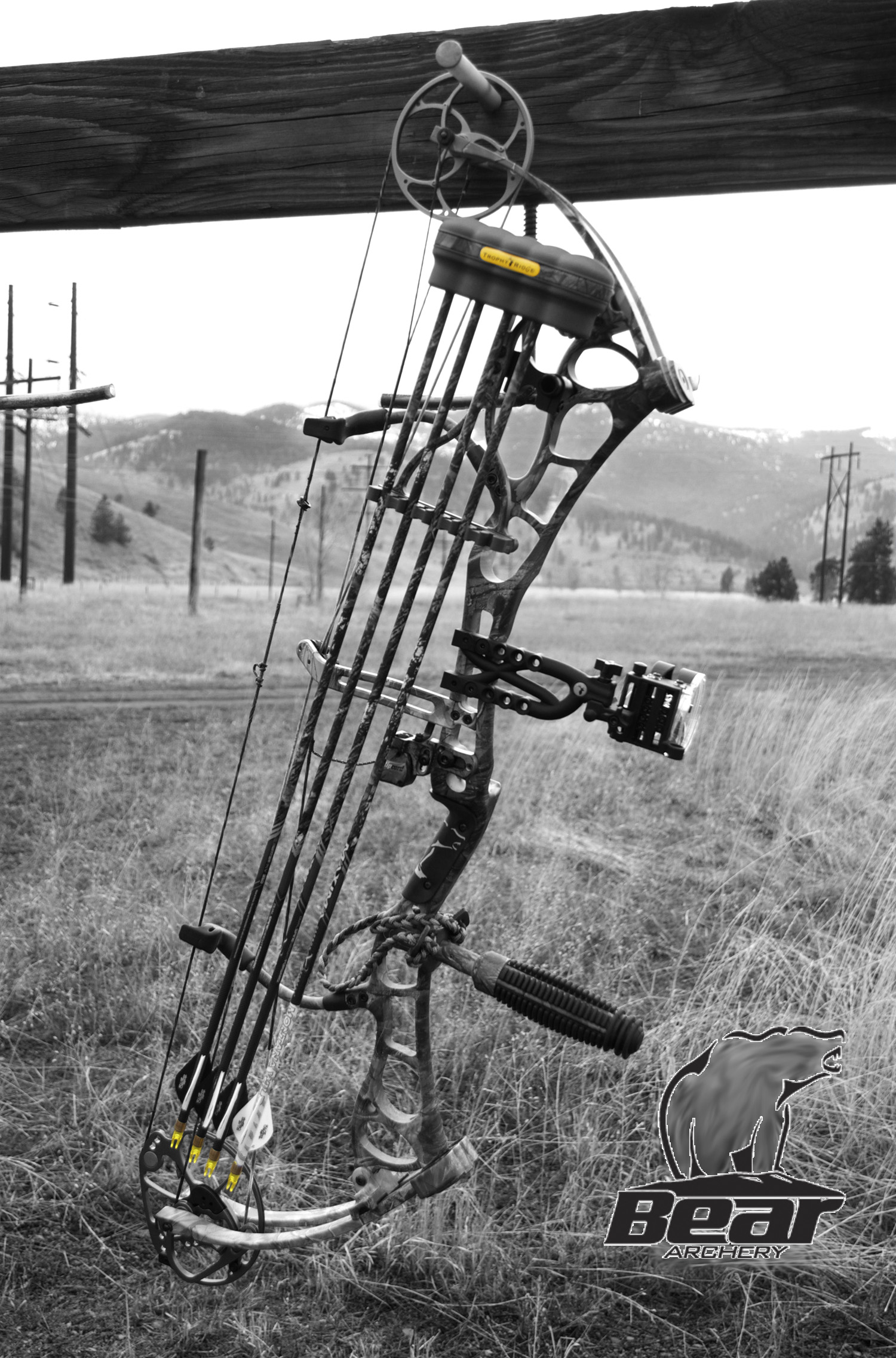 102 Best Archery Compound Bow Images Archery Hunting Arches