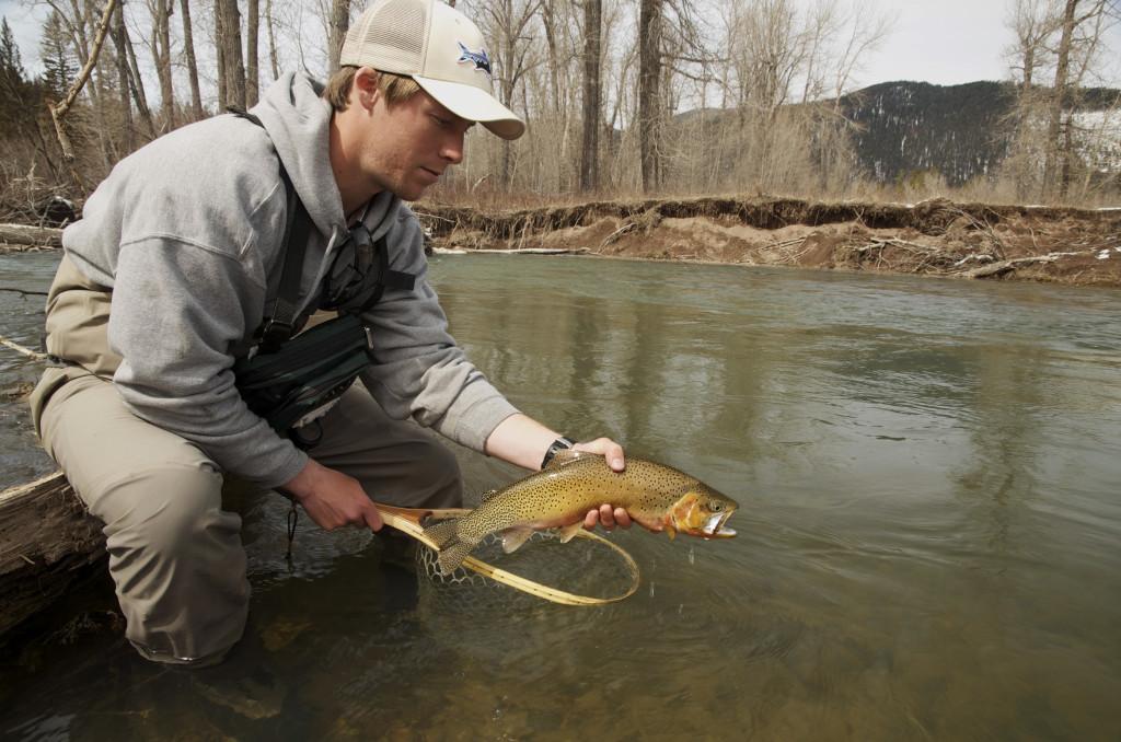 Montana Wild, spring fishing, fly fishing, Brownes Lake, cutthroat, brown trout, Highway 200, elk, MT