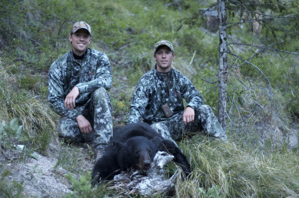 montana wild bear hunt, montana wild hunting videos, sitka bear hunt