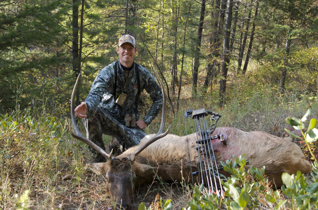 Elk hunting Montana, Montana Wild, bull elk, bowhunting, archery elk video, bugling elk, Nikon D7000