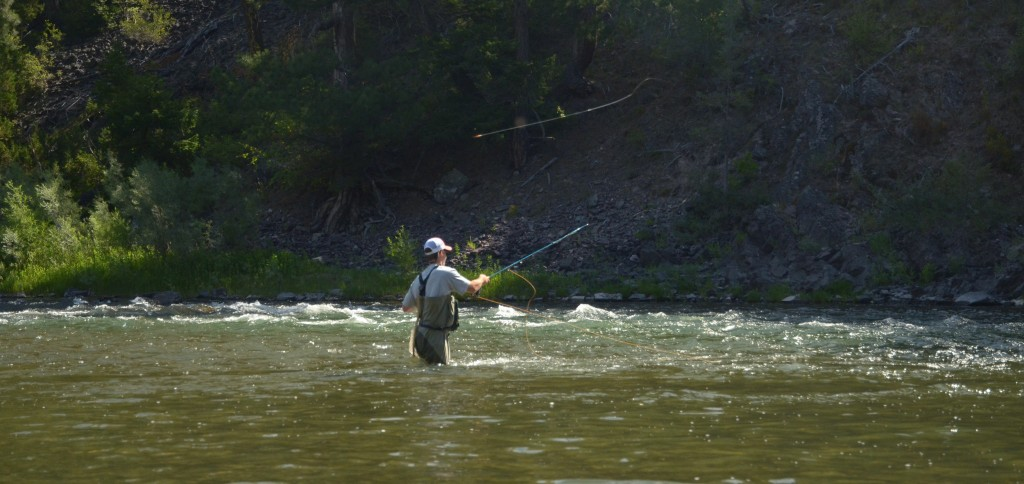 blackfoot river, montana wild, streamer fishing, cutthroat, cutbows, trout, summer, 2012