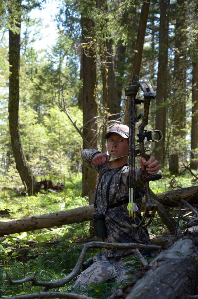 drop tine bull elk, montana wild, elk scouting, moultrie, M80, game camera, bull elk, blackfoot river, cutthroat trout, missoula, sitka, vortex
