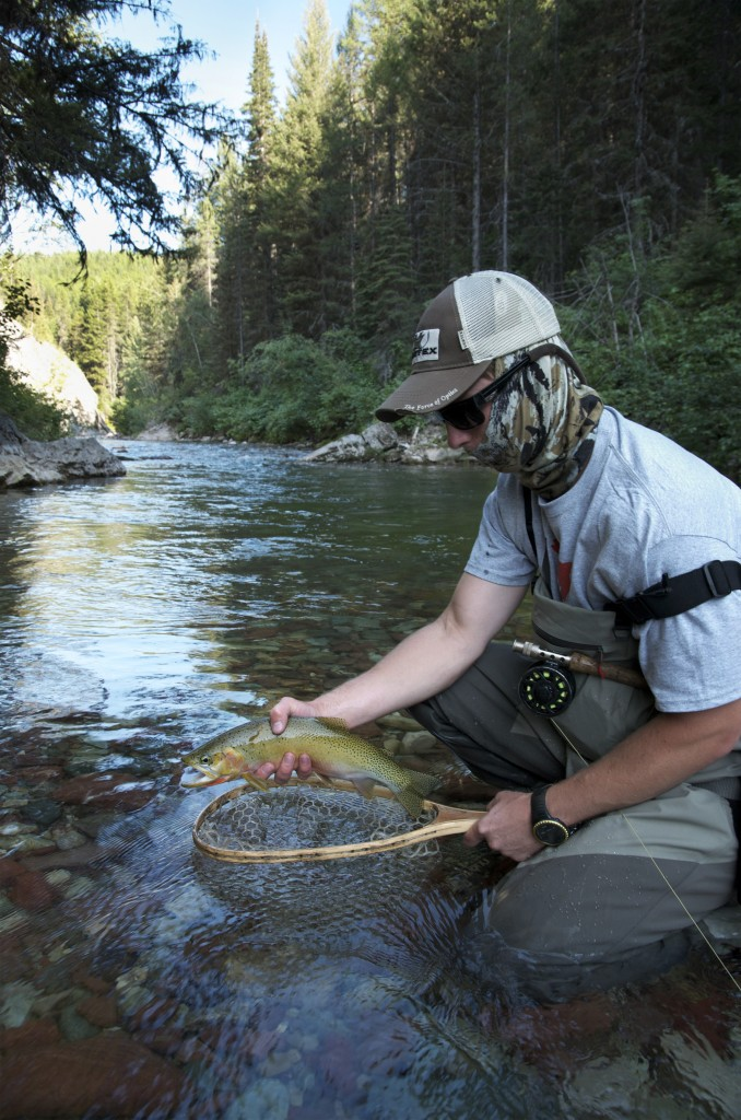 wilderness, fly fishing, bull trout, cutthroat, montana wild, mt, backpacking, camping, grizzly hackle, films, 2012