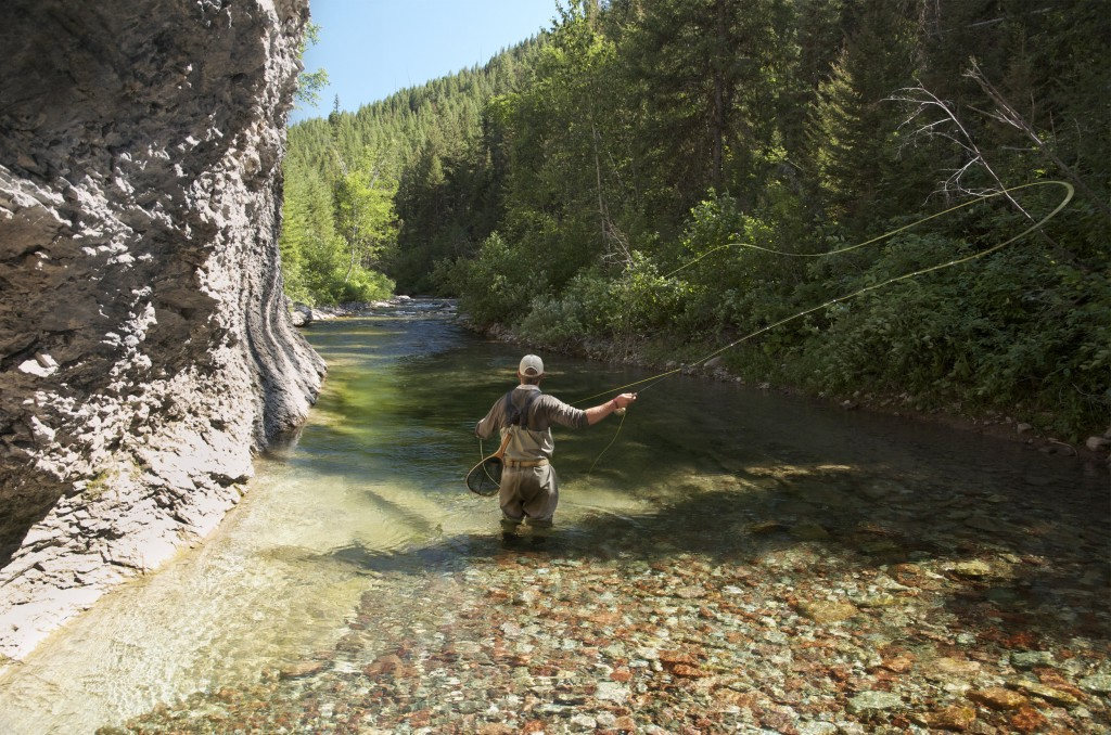 wilderness fishing, bull trout, cutthroat, fly fishing, montana wild, outdoors, 2012