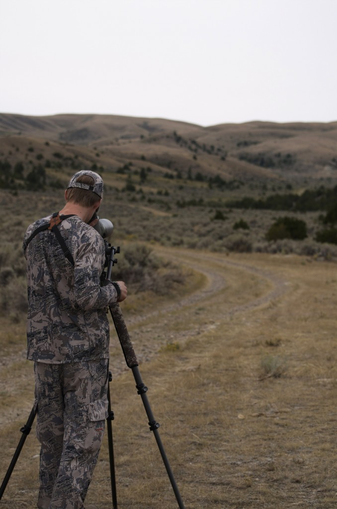 Vortex Viper HD spotting scope, spotting montana antelope, speed goats