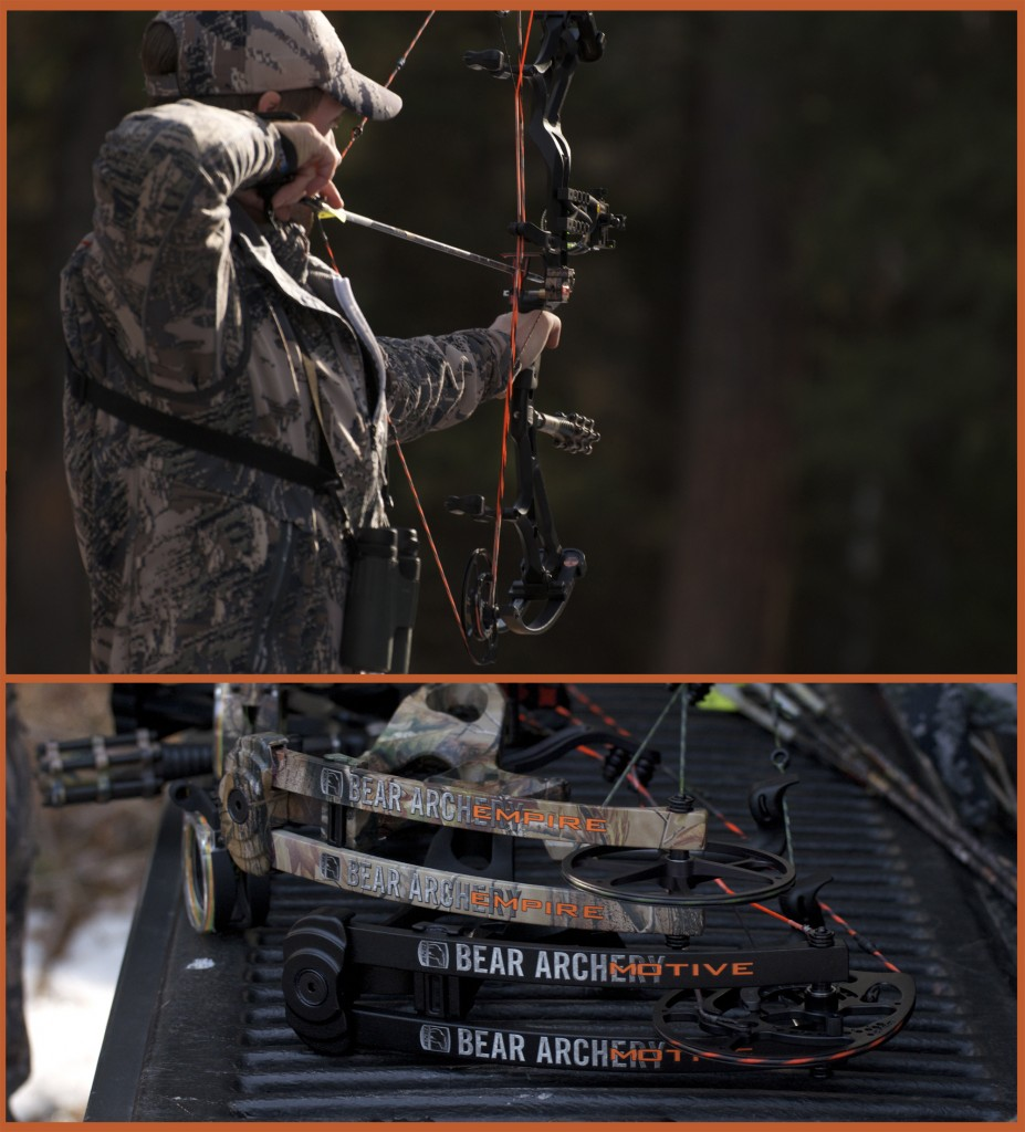 bear archery, motive 6