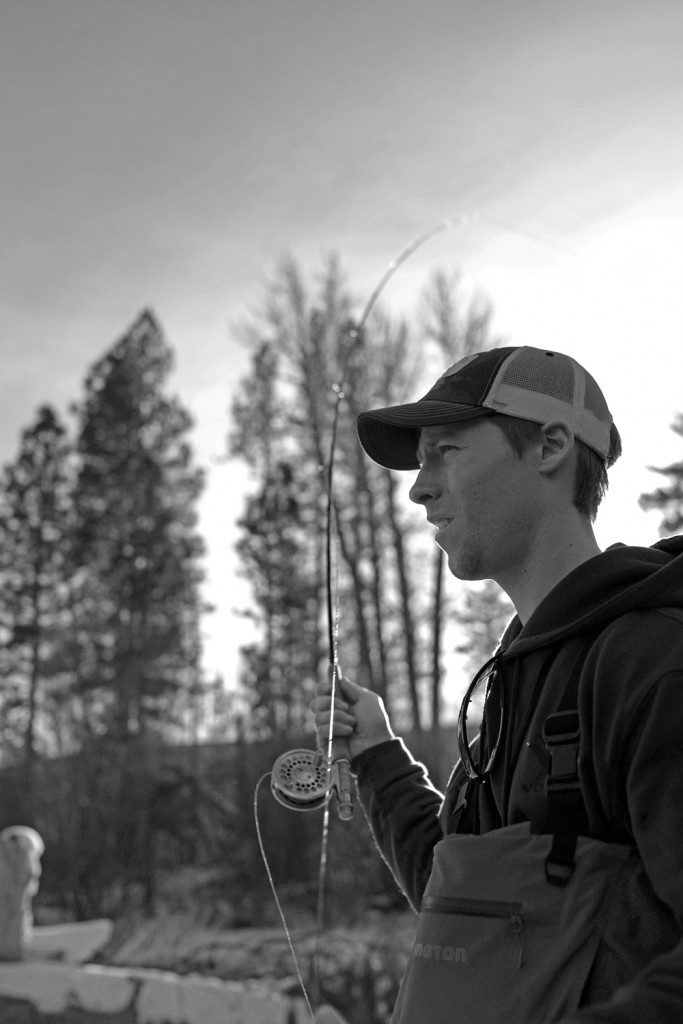 fly fishing, montana, wild, winter, montana wild, missoula, trout, streamers
