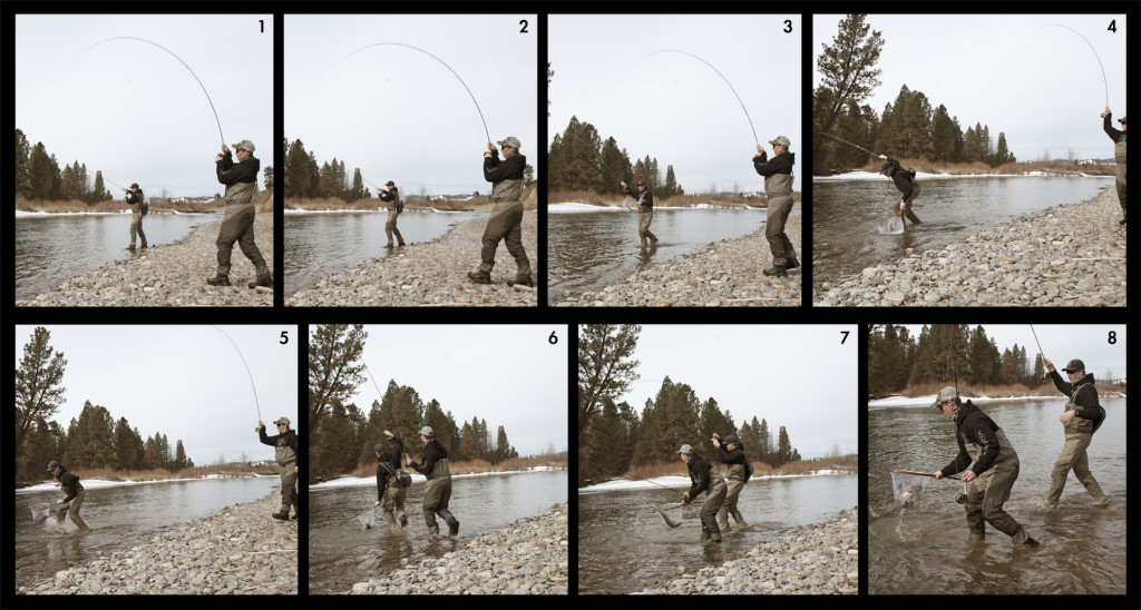 fly fishing, sequence, rainbow, net