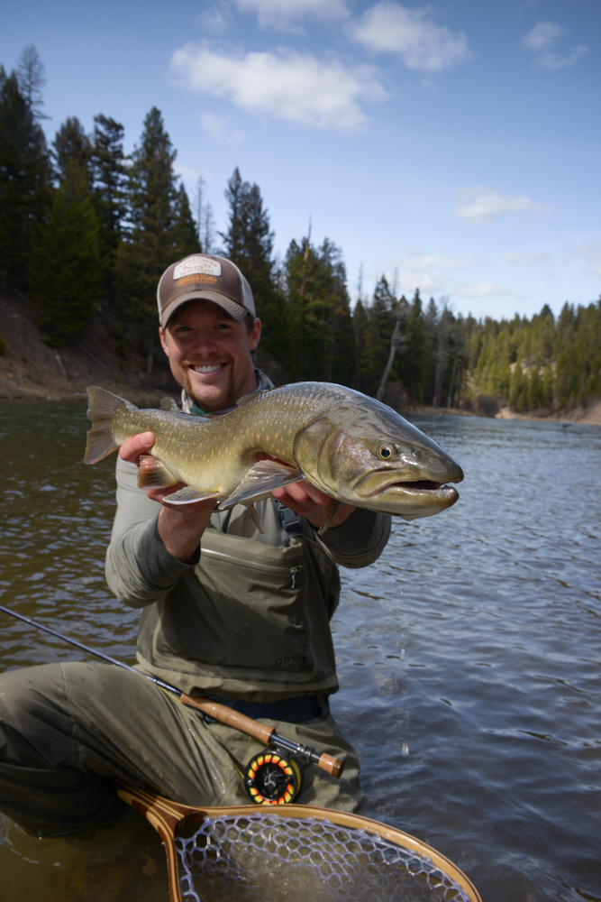 fly fishing, trout, montana, missoula, rainbow, fishing, montana wild, nikon, bull trout, bullies
