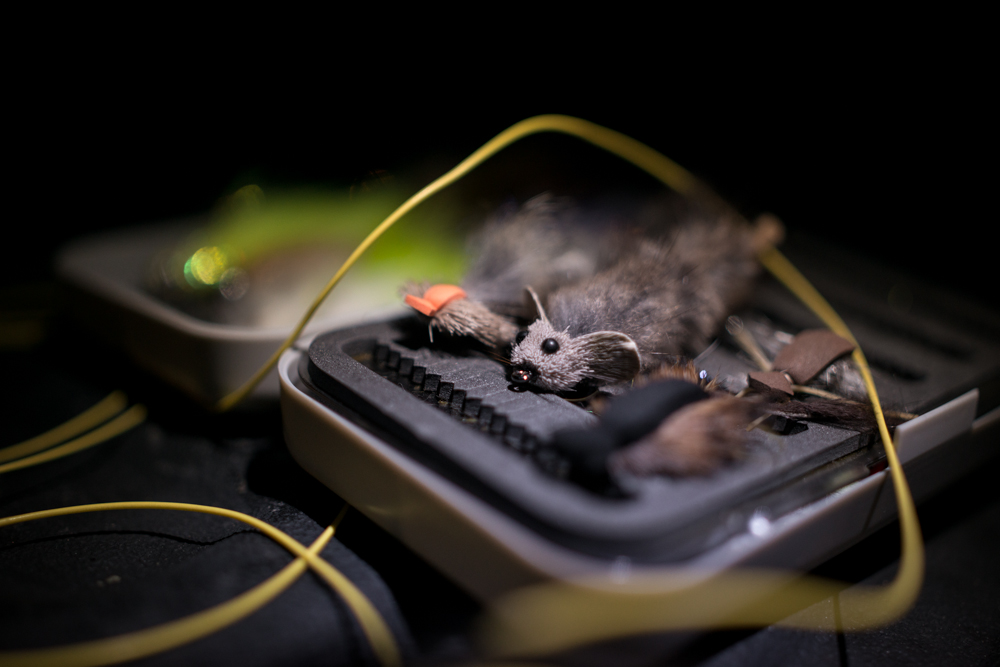 fly, fishing, box, mouse, line, orvis, night, beast