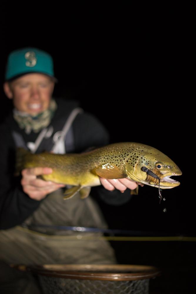 fly, fishing, mice, montana, wild, night, orvis