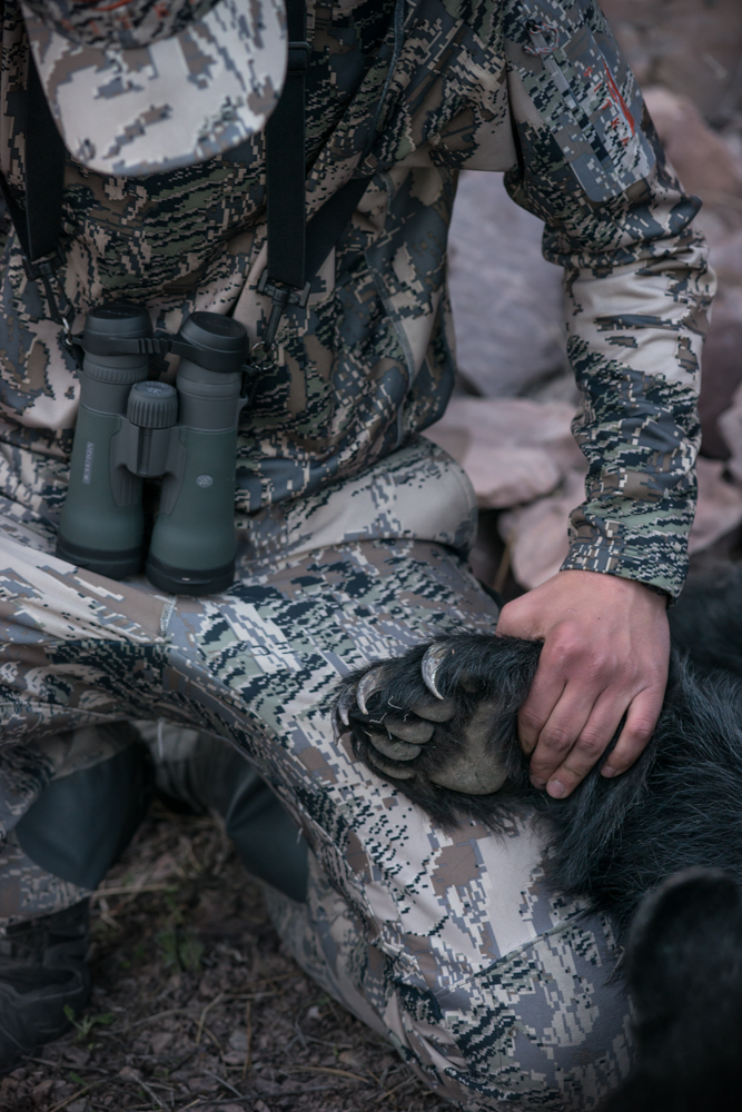 black bear, hunting, montana, wild, sitka gear, spring, 2013
