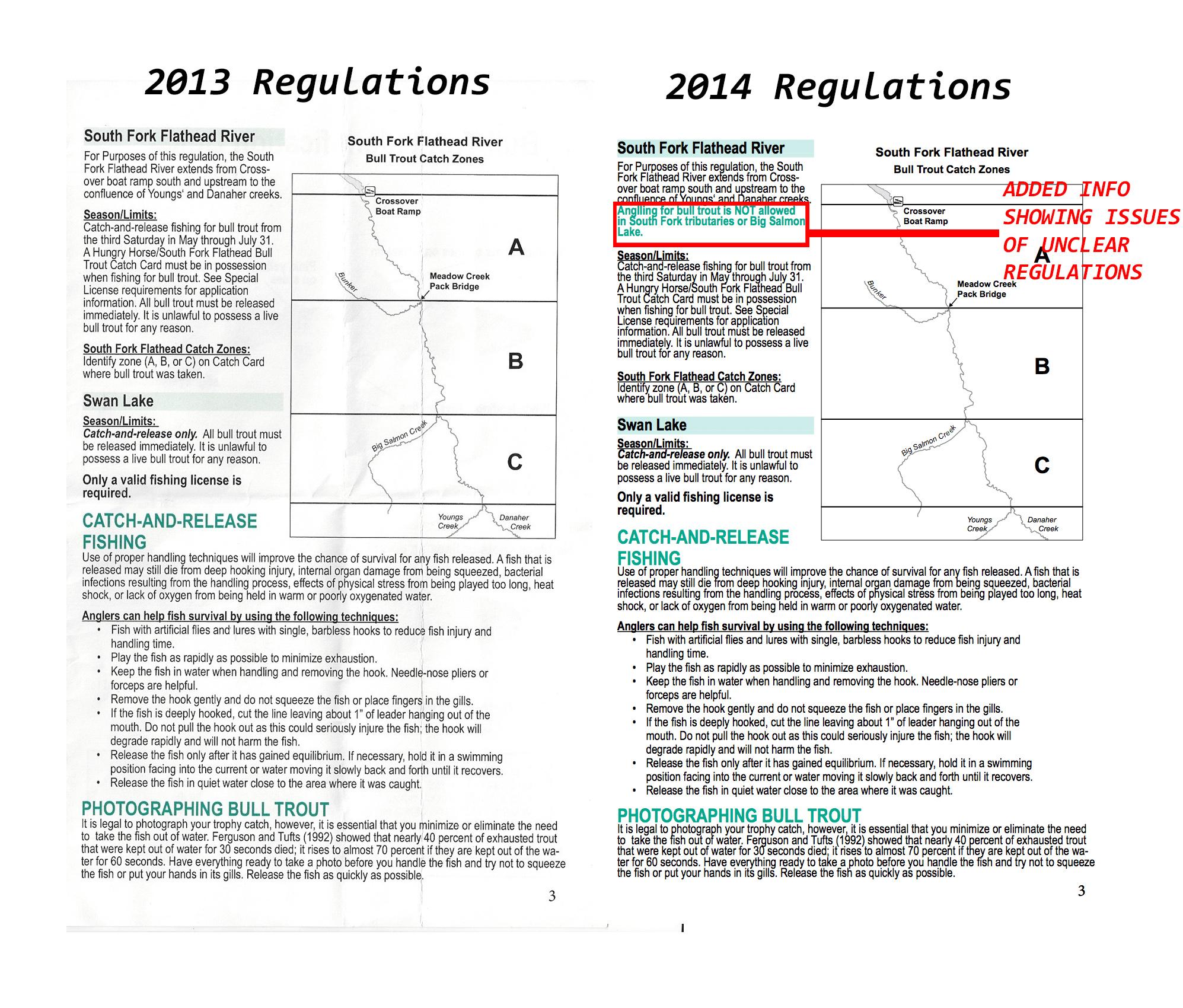 bull trout, regulations, montana, wild